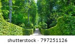 summer park with hedges and... | Shutterstock . vector #797251126