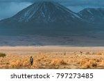 view to licancabur volcano  san ...   Shutterstock . vector #797273485