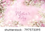spring background with... | Shutterstock . vector #797573395