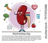 world kidney day infographic... | Shutterstock .eps vector #797592088