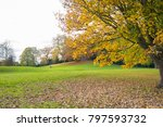 public park in autumn with... | Shutterstock . vector #797593732