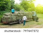 Tractor With Hay. The Tractor...