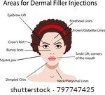 areas for rejuvenation... | Shutterstock .eps vector #797747425