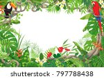 colorful tropical leaves and... | Shutterstock .eps vector #797788438