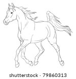 Arabian Horse Free Vector Art - (1140 Free Downloads)