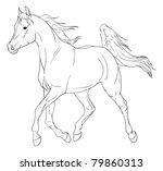 arabian horse vector... | Shutterstock .eps vector #79860313