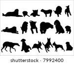 dog | Shutterstock .eps vector #7992400