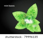 green leaves abstract... | Shutterstock .eps vector #79996135