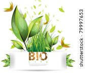 eps10 vector bio and leaf... | Shutterstock .eps vector #79997653