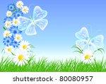 cornflowers  camomiles and...