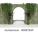 The Stone Wall With Ivy