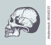 human skull | Shutterstock .eps vector #80160115