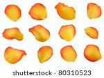 Stock vector set of elegant yellow and red rose petals vector format available gradient mesh can be used for 80310523