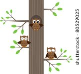 tree owls sitting on a tree... | Shutterstock .eps vector #80529025