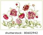 illustration peony. | Shutterstock .eps vector #80602942