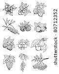 wild and garden berry vector set - stock vector