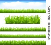 green grass and leafs set ... | Shutterstock . vector #80785297
