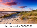 Seaside With Sand Dunes And...