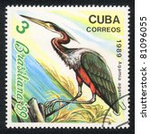 Small photo of CUBA - CIRCA 1989: A Stamp printed in CUBA shows image of a bird Agami Heron (agamia agami), circa 1989