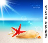 shells and starfishes on the... | Shutterstock .eps vector #81129985