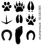 paw prints | Shutterstock .eps vector #81181585