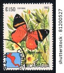 Small photo of NICARAGUA - CIRCA 1982: A Stamp printed in NICARAGUA shows image of a butterfly Callizona acesta, circa 1982