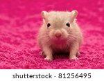 Stock photo hello 81256495