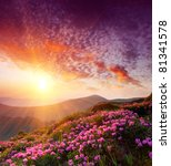 spring landscape in mountains... | Shutterstock . vector #81341578