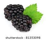 Sweet blackberry - stock photo