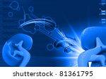 digital illustration of kidney... | Shutterstock . vector #81361795