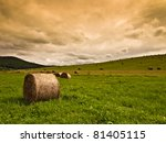 Hay Bales On Field Background
