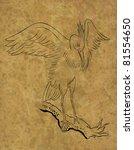 illustration of heron crane on... | Shutterstock . vector #81554650