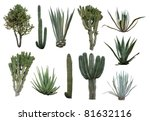 Cactus Collection Isolated On...
