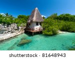 idyllic mexican jungle scenery... | Shutterstock . vector #81648943