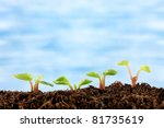 new growth   Shutterstock . vector #81735619