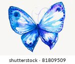 delicate blue butterfly hand...