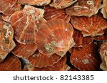 Scallops At The Fish Market Of...