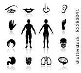 icons set human organs | Shutterstock .eps vector #82283041