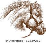 Stock vector horse 82339282
