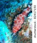 scorpionfish | Shutterstock . vector #82417150