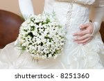 bride  dress and snowdrop... | Shutterstock . vector #8251360