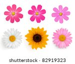 Stock vector big set of beautiful colorful flowers vector illustration 82919323