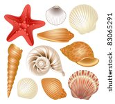 seashells collection | Shutterstock .eps vector #83065291