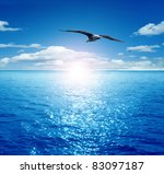 bird flying past the rising sun.... | Shutterstock . vector #83097187