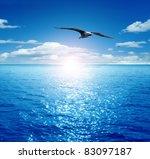 Bird Flying Past The Rising Su...