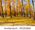 Autumn scene in a city park filled with yellow aspen trees and leaves blanketing the ground - stock photo