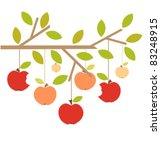Apples On Tree Branch. Autumn...