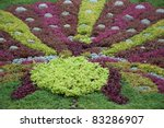 Small photo of Colorful foliage in formal garden (Alternanthera ficoidea,joyweed ,sedum, echevaria elegans)
