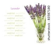 beautiful lavender flowers in a ...   Shutterstock . vector #83587180