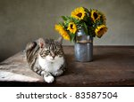 Still Life with Cat and bouquet of Sunflowers in Milk Can - stock photo